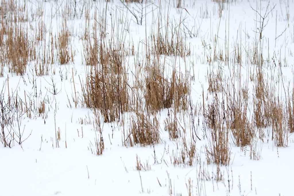 Winterblicke_6206
