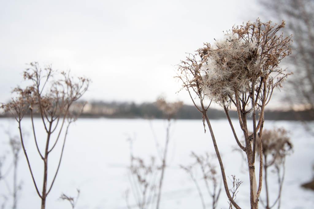 Winterblicke_6273